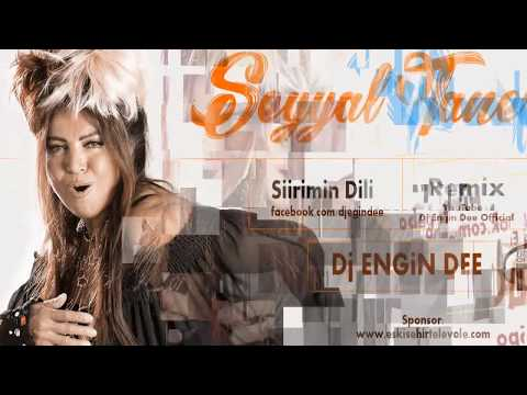 Seyyal Taner feat Dj Engin Dee - Şiirimin Dili / Remix