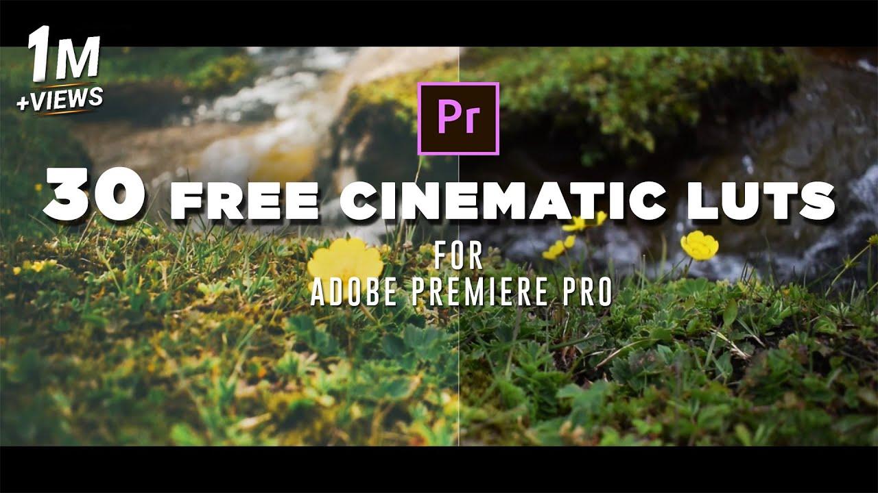 free luts for premiere pro cc 2018