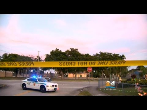 Nine People Injured In Drive-By Shooting At NW Miami-Dade Park