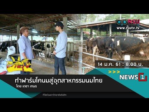ตะวันรุ่ง : ทำฟาร์มโคนมสู่อุตสาหกรรมนมไทย โดย เดชา เกษร