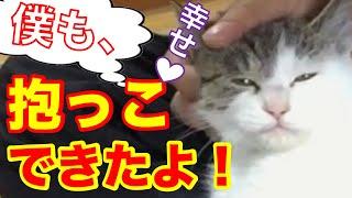 猫#野良猫#猫動画#子猫#猫かわいい 【猫の すーすけ 再生リスト】 https://www.youtube.com/watch?v=nkZTuekZurw&list=PLr-hEe7uBoCgzxv2fTq-Cu8SBaMf0ay5W ...