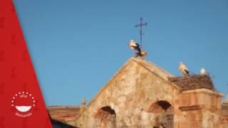 La Alborada Medieval, Ayllón