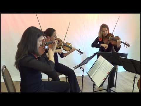 Skyfall String Quartet