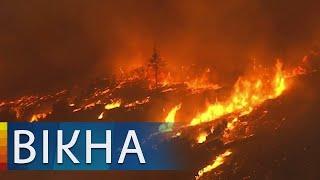 Супертайфун в Японии и пожары в Калифорнии: сильный удар стихии в мире   Вікна-Новини