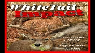 Whitetail Impact 1998 PC (Whitetail Fever)