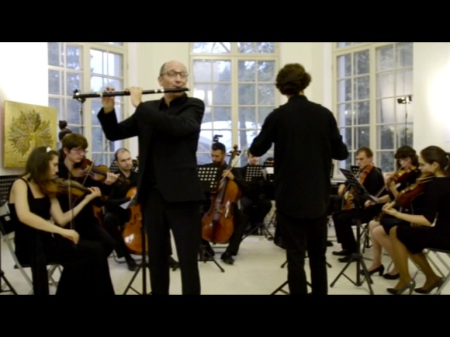 [ИНТРО] Камерный оркестр Тарусы