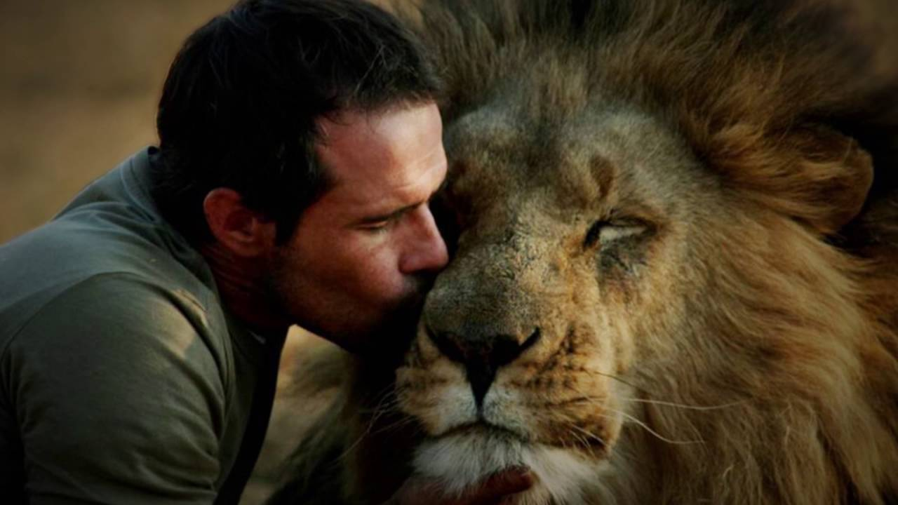 Amazing Facts of Faith — Lions