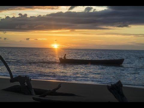 Sea Turtle Evening Tour - Orange Travel Suriname