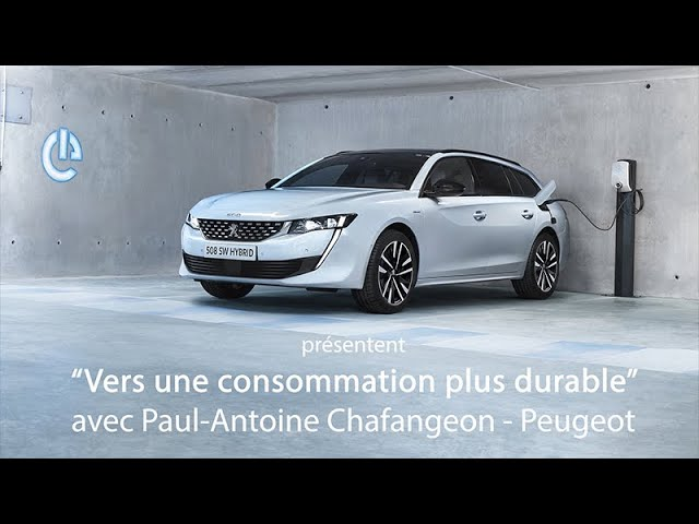Interview de Paul-Antoine Chafangeon - Peugeot