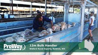 ProWay - 12m Bulk Handler - Wellard Rural Exports