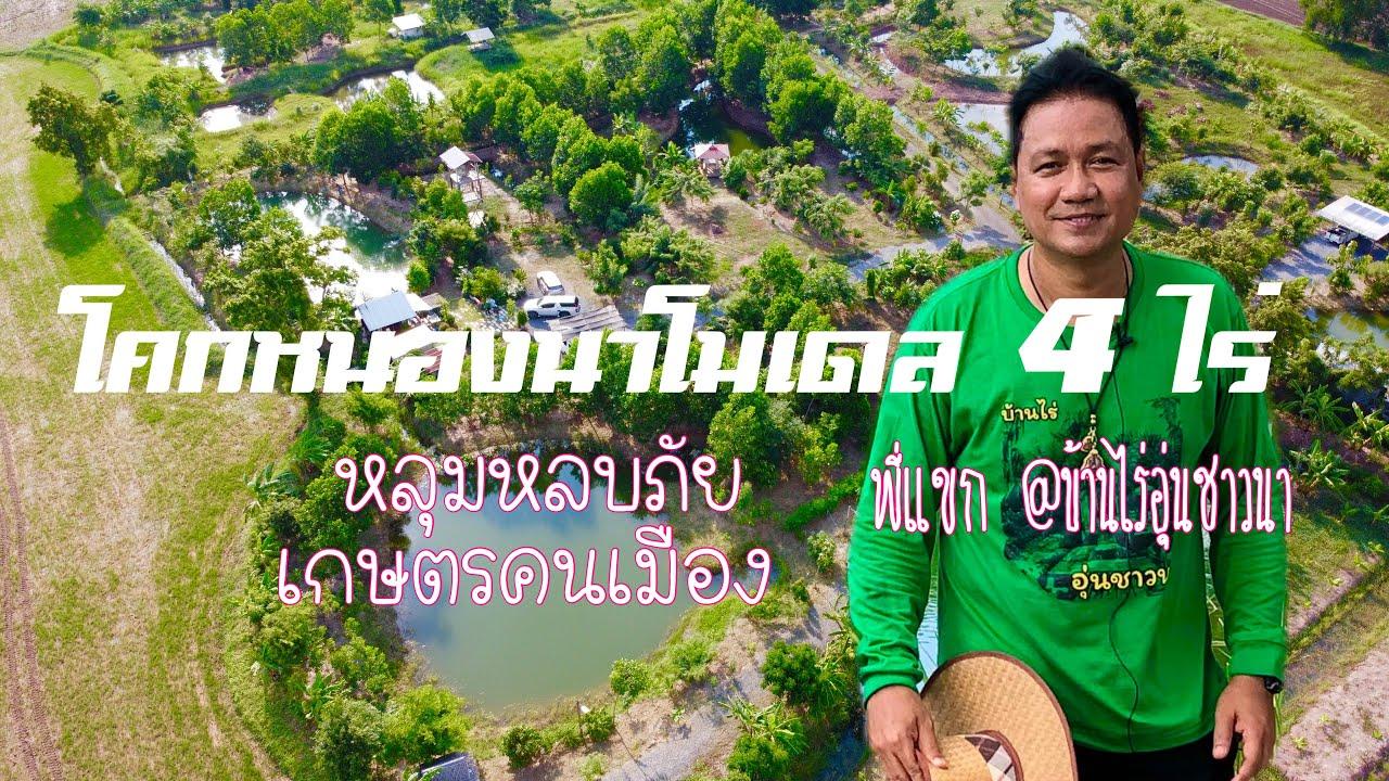 โคกหนองนา โมเดล 4 ไร่ หลุมหลบภัยเกษตรคนเมือง หนองแซง สระบุรี โดยพี่แขก @บ้านไร่อุ่นชาวนา by MrTORUNG