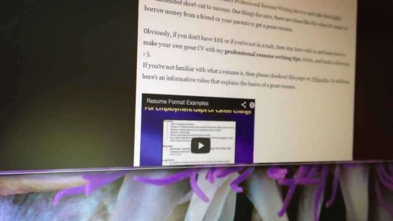 Professional Resume Writing Tips 2013 Youtube