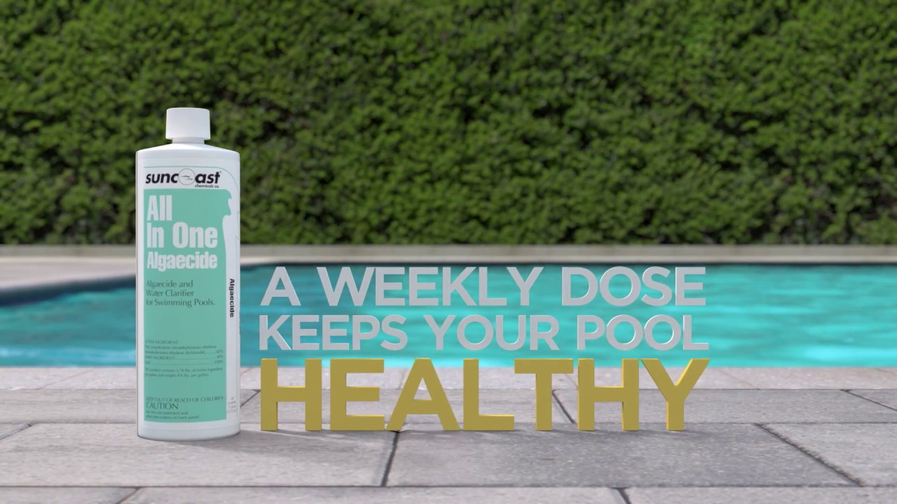 Algaecide: The Best Way to Kill and Prevent Algae in your Pool