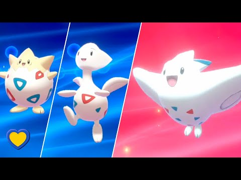 HOW TO Evolve Togepi Into Togekiss In Pokemon Sword And Shield