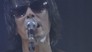"The Birthday – LIVE DVD / Bu-ray「LIVE AT NIPPON BUDOKAN 2015""GOLD TRASH""」ダイジェスト"