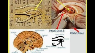 Atlantis, Pyramiden & Kundalini