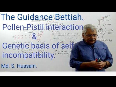 pollen-pistil-interaction-&-genetic-basis-of-self-incompatibility-for-all-board-neet-aspirants-l-14