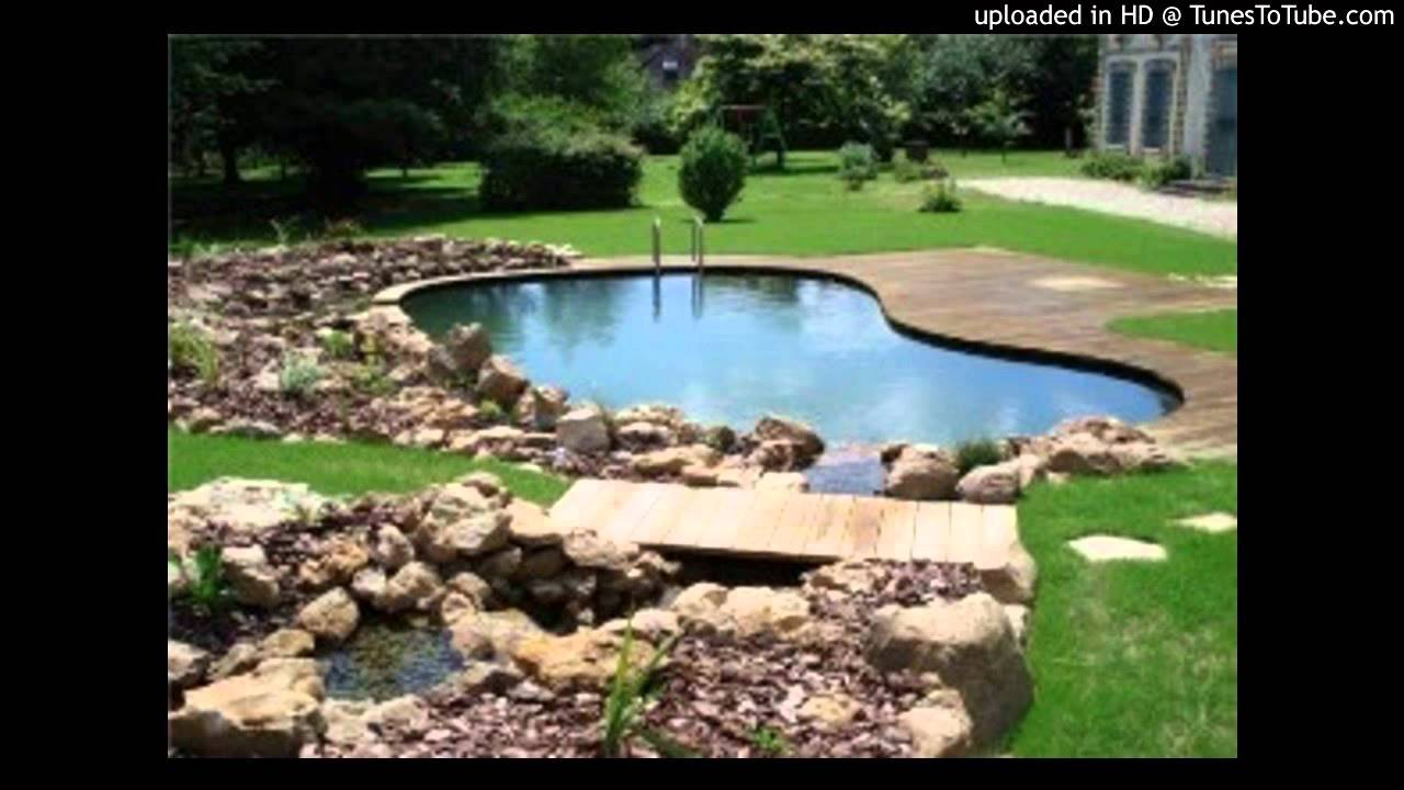 piscine naturelle youtube