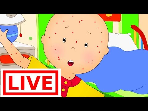 Caillou gets Sick | Videos for Toddlers | Full Episode LIVE 🔴 | Cartoon Movie | Cartoon