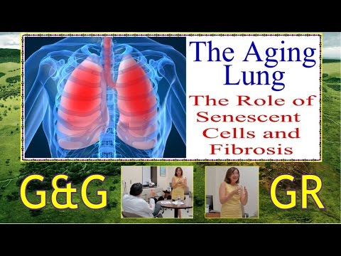 SA STGEC G&G GR: Aging Lungs (2015)