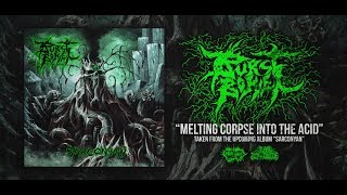 BURST BOWEL - MELTING CORPSE INTO THE ACID [SINGLE] (2019) SW EXCLUSIVE