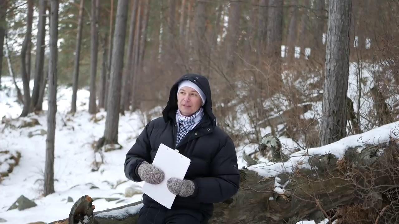 Лев Гороскоп на декабрь 2018 Событие 2