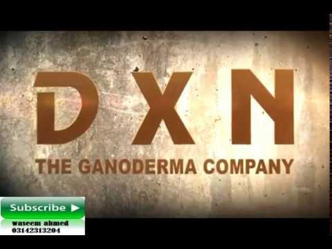 Interview with Dato' Dr  Lim Siow Jin about DXN Ganoderma and Spirulina