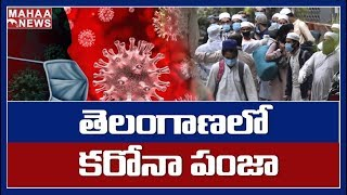 229 Positive Cases In Telangana | More Number Of Positive Cases In Warangal | MAHAA NEWS