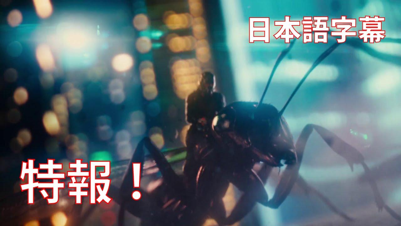 画像: デレクの予告:映画『アントマン』 特報! youtu.be