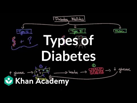 Types of diabetes | Endocrine system diseases | NCLEX-RN | Khan Academy
