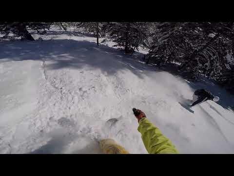 Jackson Hole 2017 Trip