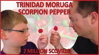12-yr-old eats Trinidad Moruga Scorpion (2 million Scoville), one of Worlds Hottest Peppers