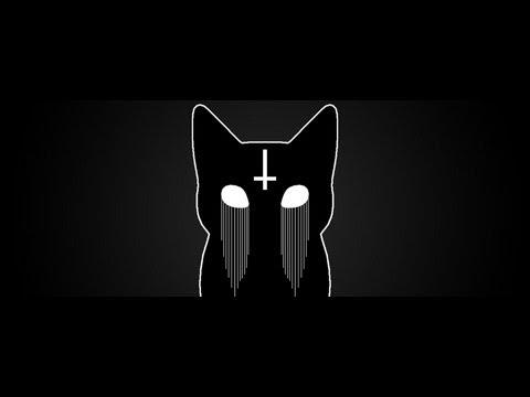 Mr. Kitty - 44 days lyrics