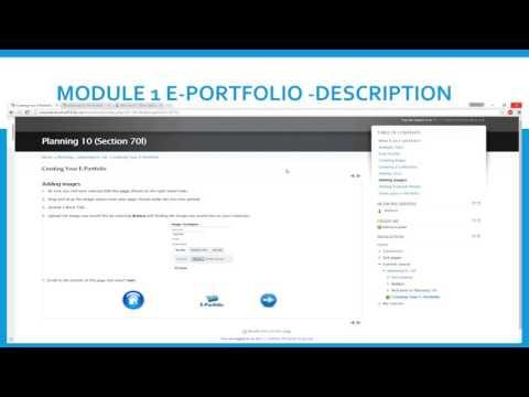 Module 1 E Portfolio Setup