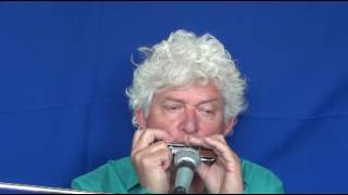 Tims Tiny Tunes #259 | BLUES, level 4 - Harmonica play-along lessons | Jazz harmonica licks (lr)