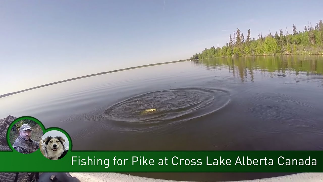 Fishing for pike at cross lake alberta canada youtube for Fishing for pike