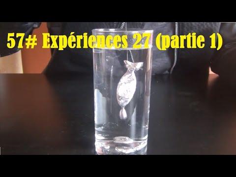 57# Top 10 des expériences 27 (partie 1) + BONUS