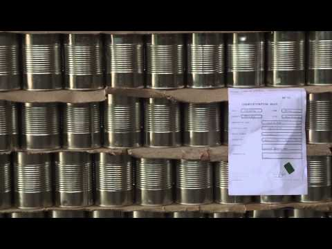 New beans variety for canning industries