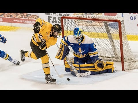 Hockey Highlights - Tech Vs LSSU - Dec 16, 2017