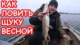 КАК ЛОВИТЬ ЩУКУ ВЕСНОЙ ПРИМАНКИ НА ЩУКУ Рыбалка 2020