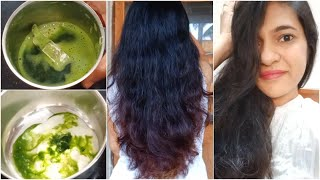 Curry Leaves hair Mask For Long Dandruff free hair Hair Mask for Hair Growth Prevent Hair Fall