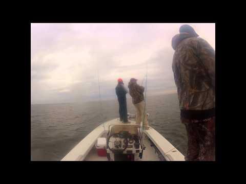 5 trout...5 casts