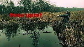 Рыбалка на паук в высохшем болоте
