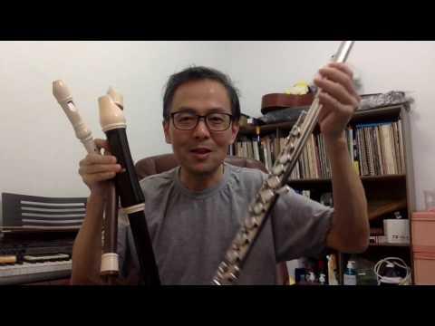 1. Comparing recorder vs flute : Intro