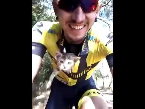 Cyclist Saves A Lost Kitten By Tucking Him In His Shirt a9db6ab24