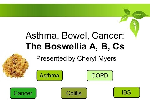 Asthma, Bowel, Cancer: The Boswellia ABCs presentation by Cheryl Myers - 11/17/2016