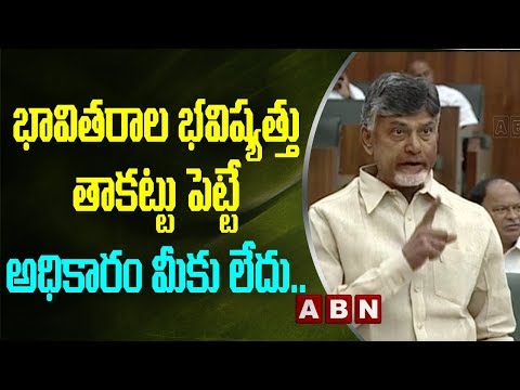 TDP Chief Chandrababu Naidu Aggressive Speech in AP Assembly   AP Assembly Budget Session 2019