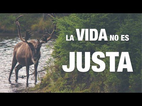 La Vida No Es Justa  Audio  Reflexión Por Sandra Burgos