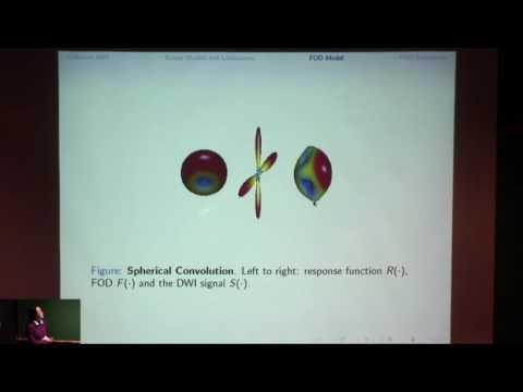 Fiber orientation distribution function estimation by spherical needlets