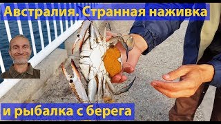 Странная наживка и рыбалка с берега океана. (видео 046)